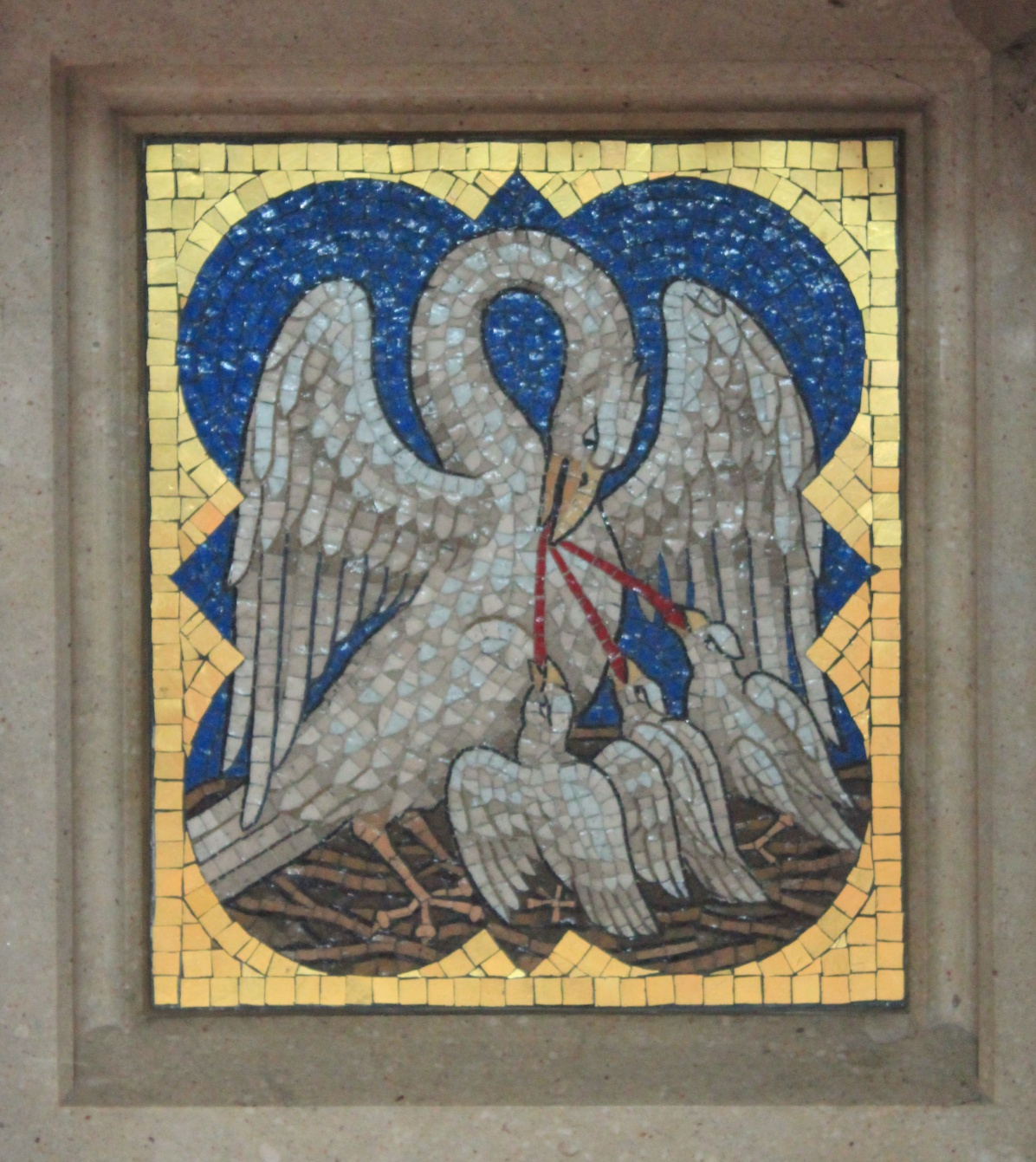 Pelican's Breast Image